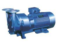 SKA型直联水环式真空泵