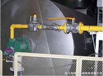 有机废气直燃式净化装置