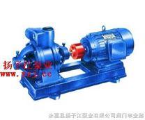 漩涡泵:W型双级漩涡泵