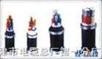 計算機儀表電纜(對絞,對屏,鎧裝)DJYPVP22/DJYPVP22電纜