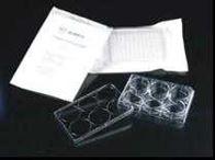 細胞培養板 Tissue Culture Plate