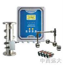 超聲波汙泥濃度計(插入式) 型號:D10-DM4000