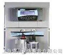 9184sc在线余氯分析仪 在线余氯检测仪