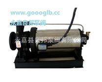 浙江良邦 卧式屏蔽 管道泵 www.goooglb.cc