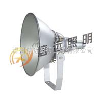 NTC9210防震型投光灯 NTC9210-J250W NTC9210-J400W 户外铁路投光灯