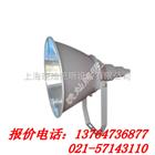 【GT102】GT102--J1000W防震型投光灯,上海厂家,NTC9200