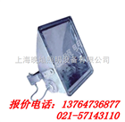 【NTC9240】NTC9240-J1000W高效大功率投光灯,上海厂家,NTC9210