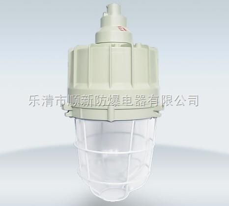 BAD54-J防爆节能灯