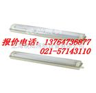【FAY6010】FAY6010全塑荧光灯,GFD6010荧光灯,上海厂家