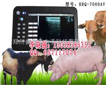奶牛专用B超机,奶牛B超诊断仪器,兽用彩超HRQ-7000AV