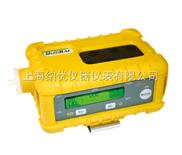 MultiRAE IR 五合一气体检测仪[PGM-54]