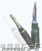 信号电缆PTYA23铁路信号电缆PTYA23 4芯 6芯