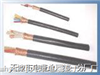 阻燃双绞屏蔽电缆 ZR-DJYP2VRP2 8X2X1.0