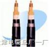 铠装电缆规格型号M22,M32 2*0.5,3*0.75,4*4