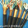 ZR-DJYVPR ZR-DJYVP天津阻燃計算機電纜ZR-DJYVPR ZR-DJYVP