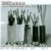 电话电缆HYA53-100*2*0.9
