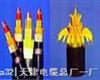 ZR-阻燃控製電纜