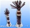 塑料絕緣屏蔽控製電纜P2;P22