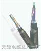 铠装铁路信号电缆-铁路信号电缆PTYA23