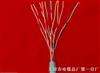 矿用通信电缆MHYAV-10×2×1