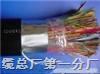 HYAT53铠装通信电缆-HYAT23|充油通信电缆-HYAT23-电缆
