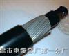 全塑控制电缆-KVVRP,