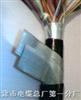 ZR-DJYVP22电缆,ZR-DJYVP22电缆价格,优质的ZR-DJYVP22电缆厂家