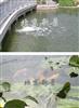 人工湖水水体生态水处理工艺