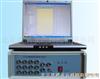 ST2000ST2000静载测试仪