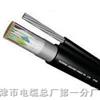 填充型HYAT600×2×0.5充油通信电缆,