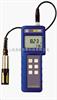 YSI DO200YSI DO200型 溶解氧、温度测量仪