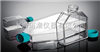 25/75/175cm2斜颈细胞培养瓶(密封,透气,悬浮培养,TC处理)