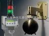 LB111N固定式中子剂量率监测仪