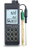 HI98172 便携式微电脑pH-ORP-ISE-°C 测定仪