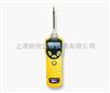 MiniRAE 3000 VOC检测仪[PGM-7320]